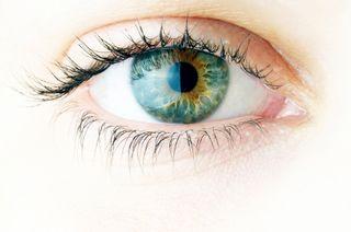 Green Eye_000011448939XSmall