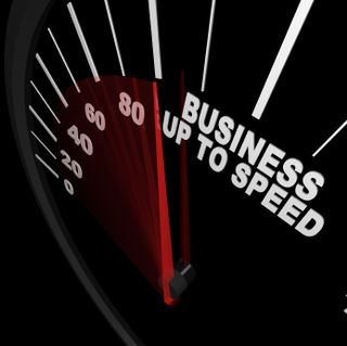 Business Speedo 000016662418XSmall