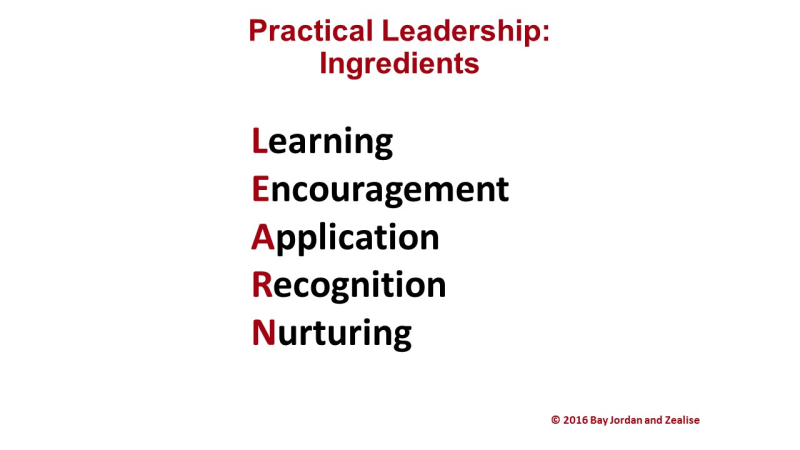 Practical Leadership - Ingredients